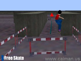 The Old Remedy 3D Skateboarding