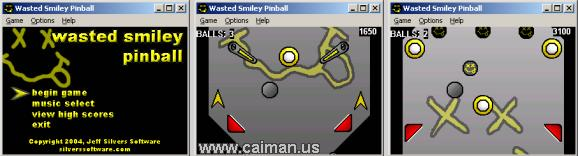 Wasted Smiley Pinball