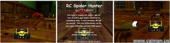 RC Spider Hunter