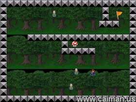 Mario Labyrinth