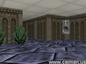 Project X: Maze Training