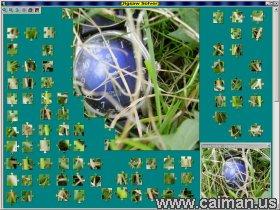 Jigsaw Solver 16