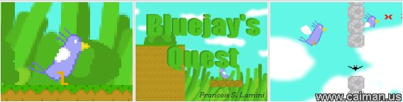 Bluejay's Quest