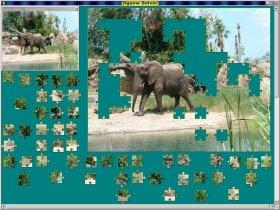 Jigsaw Solver 34