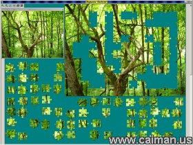 Jigsaw Solver 38