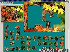 Jigsaw Solver 43