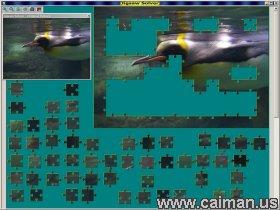Jigsaw Solver 44