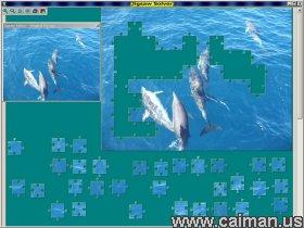 Jigsaw Solver 45
