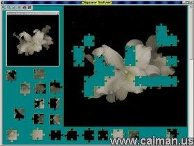 Jigsaw Solver 48