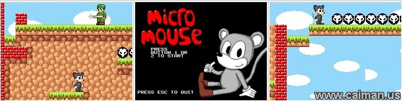 Micro Mouse