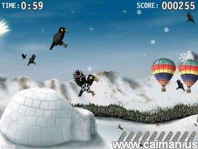 Blackbird Hunt
