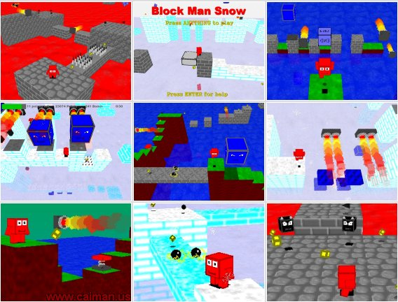 Mega Block Man