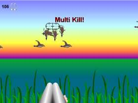 Duck Blitz