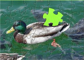 Jigsaw Puzzle for Kids - Duck