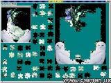 Jigsaw Solver 42